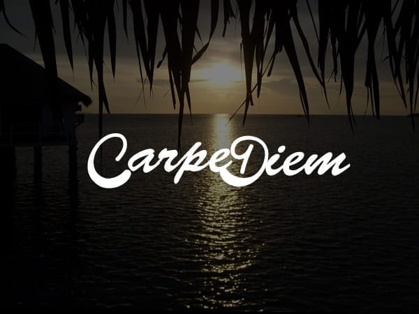 Carpe Diem Child Theme For Divi