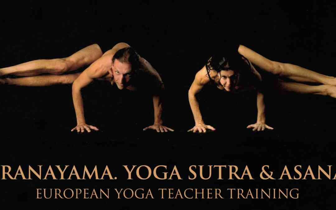 Ashtanga Yoga Teacher Training with Gregor Maehle